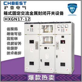 10KV高压成套开关环网柜HXGN17-12