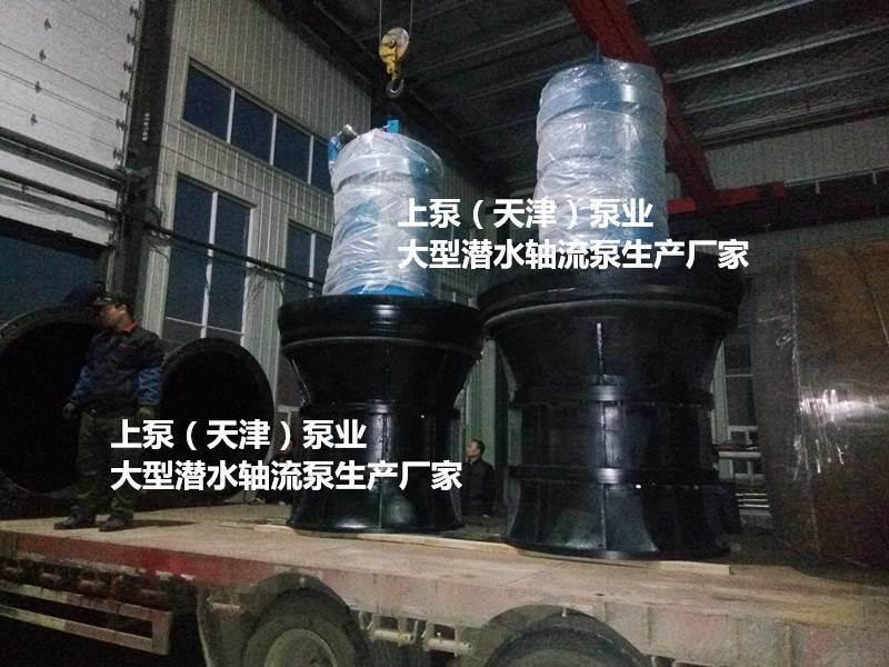 水利樞紐用1400QZB-125高壓潛水軸流泵