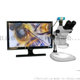 XTL-6745TJ1-720HD型高清视频解剖镜