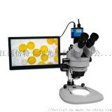XTL-7045TJ1-700HD型三目体视显微镜