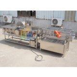 涡流清洗机生产厂家,蔬菜清洗振动沥水机