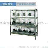 實驗室兔籠架兔籠架12籠幹養式