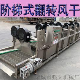 休闲食品风干机 果蔬用常温除水干燥设备
