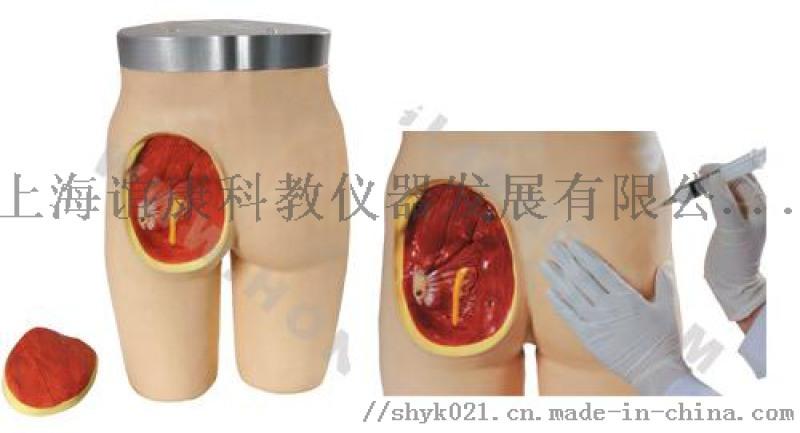 臀部肌内注射与解剖结构模型-护理技能训练模型