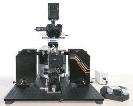 法国Phaseview3D激光片层扫描系统,Alpha3