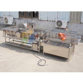 大型中央厨房设备涡流清洗机 全自动商用洗菜机