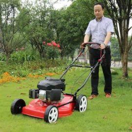 四合一多功能草坪修剪机修剪除草高效草坪机