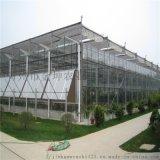 智慧溫室大棚設計 智慧溫室大棚工程