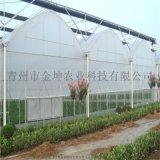 金坤溫室 連棟薄膜溫室設計 薄膜溫室大棚建造
