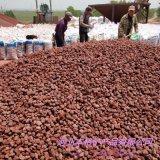 火山石厂家供应 多肉铺面火山石 园艺火山石颗粒