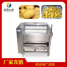 红薯地瓜土豆清洗机 小型毛刷清洗机去皮机