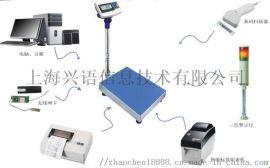 江苏-可二次开发电子秤,称重电子称带接口开发