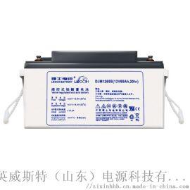 65Ah免维护蓄电池理士蓄电池EPS蓄电池65Ah