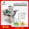多功能大型双头切菜机切丁机切片TS-Q118A