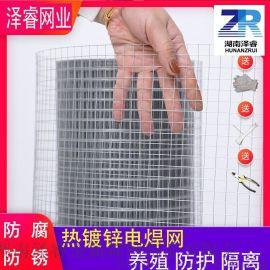 热镀锌电焊网 镀锌铁丝网 电焊网片 钢丝防护栏