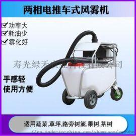 推车式喷雾消毒一体机电动大容量风雾机