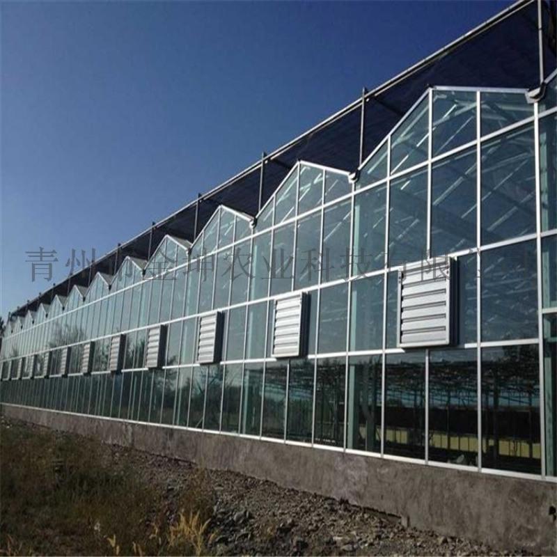 智能温室大棚设计 智能温室大棚承建