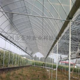 薄膜温室建设 连栋薄膜温室大棚设计