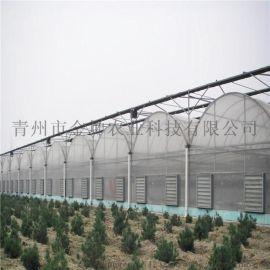 薄膜温室建设 连栋薄膜温室大棚造价