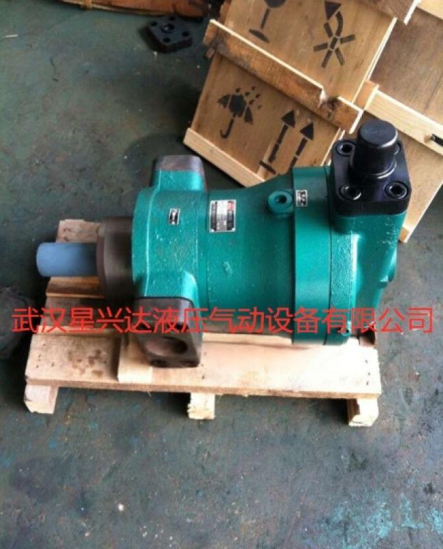 新聞:柱塞泵250YCY14-1D