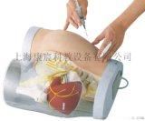 臀部肌肉注射及对比模型
