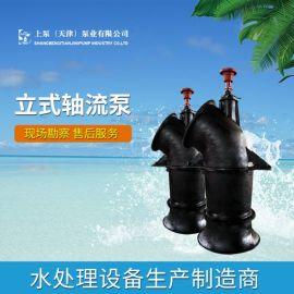 双基础ZLB立式轴流泵制造厂家