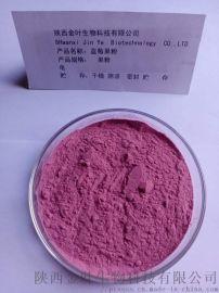 天然蓝莓果粉
