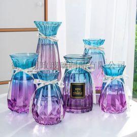 富贵竹玻璃花瓶发水培北欧透明摆件创意插干花花店用