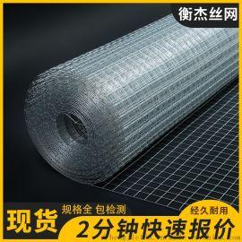 建筑工地铁丝网内外墙面水泥挂网防裂网钢丝镀锌电焊网