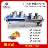 水果蔬菜风干机沥干机清洗风干TS-FX35