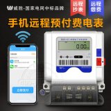 长沙威胜DDS102单相预付费电表 远程抄表电能表 免费配抄表系统