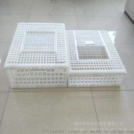 供应新疆塑料鸡笼子成鸡运输笼鸡鸭周转箱
