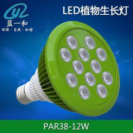 东莞蓝一和PAR38射灯外壳 LED植物灯套件