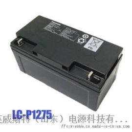 松下EPS/UPS蓄电池 免维护铅酸蓄电池75Ah