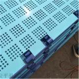 养殖网 菱形网板卷 圈玉米网生产厂家