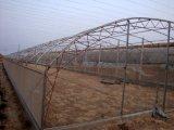青島單棟溫室大棚,單棟溫室大棚廠家