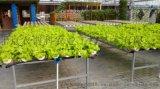 温室各种无土栽培设施