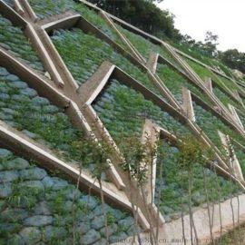 厂家直销40*60植生袋 生态护坡绿化袋