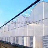 山東青州溫室專家專業承建連棟溫室連棟薄膜溫室工程