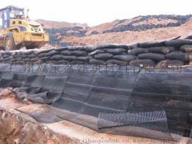 工廠供應路基工程用土工格柵 單向塑料土工格柵