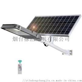 太阳能路灯厂家 户外太阳能庭院灯 led农村路灯
