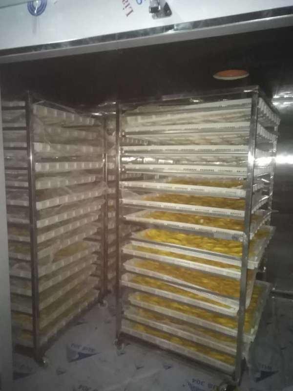 越南芒果烘干设备、泰国芒果烘干机、热泵烘干机
