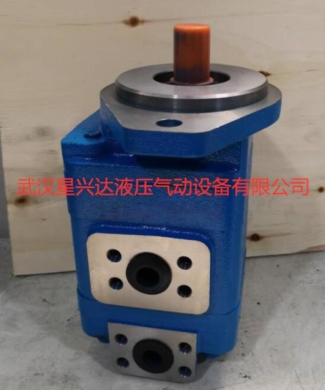 双联齿轮油泵CBG2080/2040