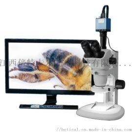 XTL-6745TJ2-820HD型三目立体显微镜