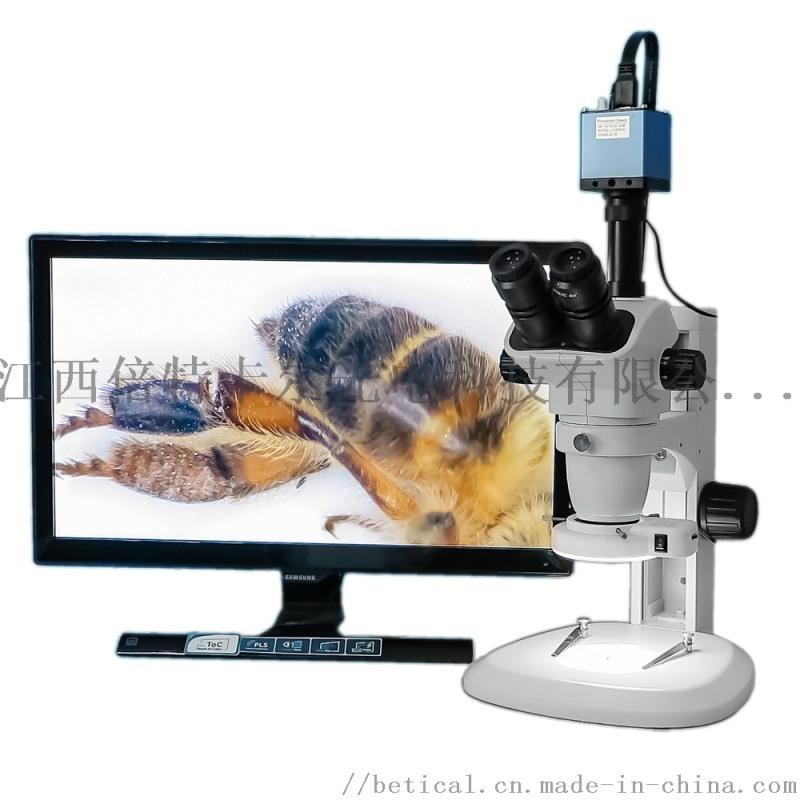 XTL-6745TJ2-820HD型三目立體顯微鏡