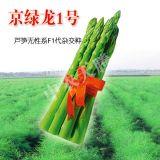 芦笋种子,京绿龙1号芦笋种子,高产芦笋种子,抗病芦笋种子 农科院推荐新品种