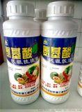 氨基酸,植物生命的加油站