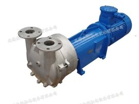 西门子纳西姆 佶缔纳士NASH 2BV2 060-ONC水环真空泵 液环真空泵