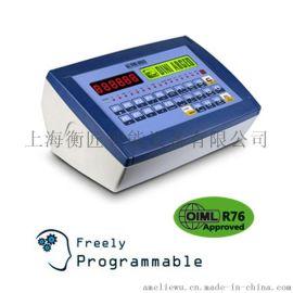 Dini Argeo狄纳乔3590EXP数字称重显示器高速智能称重控制器