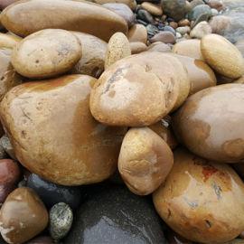 大鹅卵石_天然景观卵石_重庆大鹅卵石厂家。